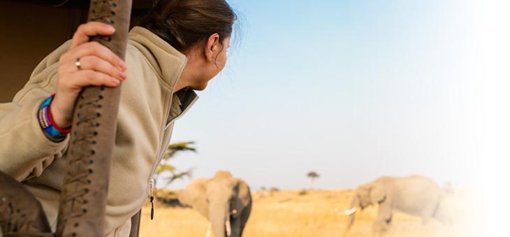 Frau beobachtet Elefanten in der Savanne Afrikas.