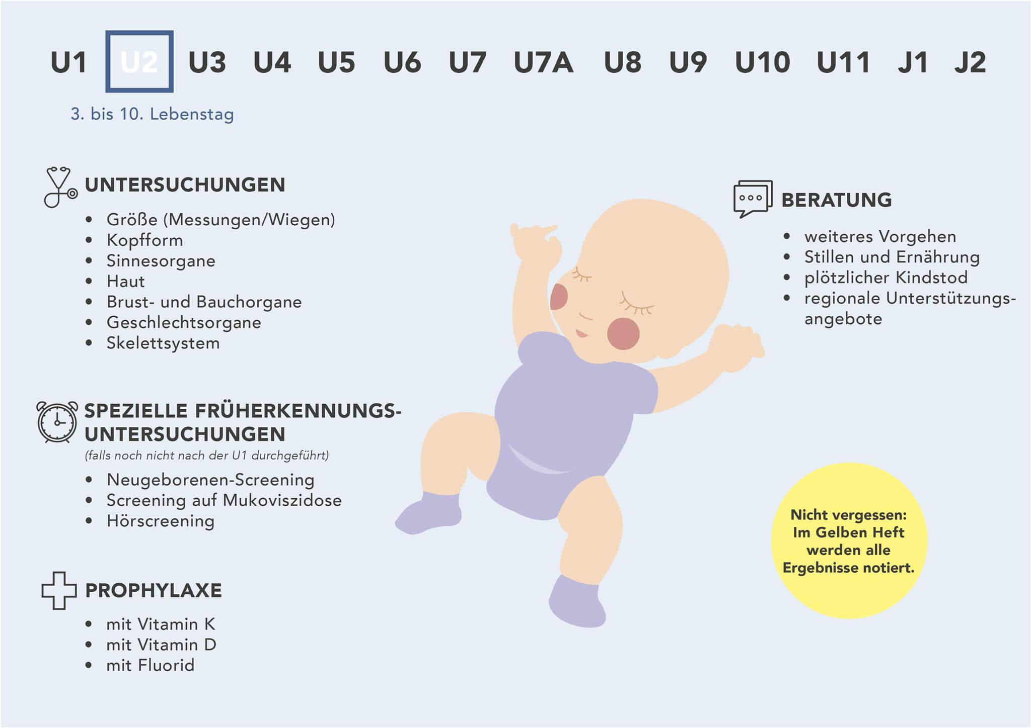 Fakten zur U2-Untersuchung - Grafische Darstellung