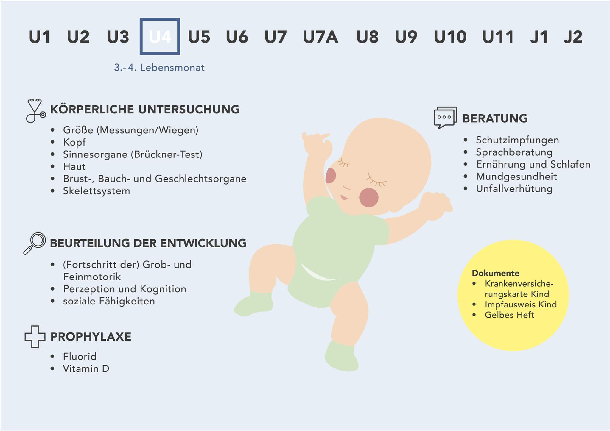 Fakten zur U4-Untersuchung - Grafische Darstellung