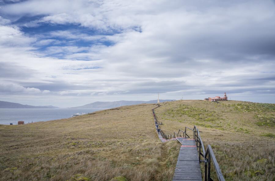 """Wiesenlandschaft bei Kap Hoorn in Chile - """"Tor zur Antarktis""""."""
