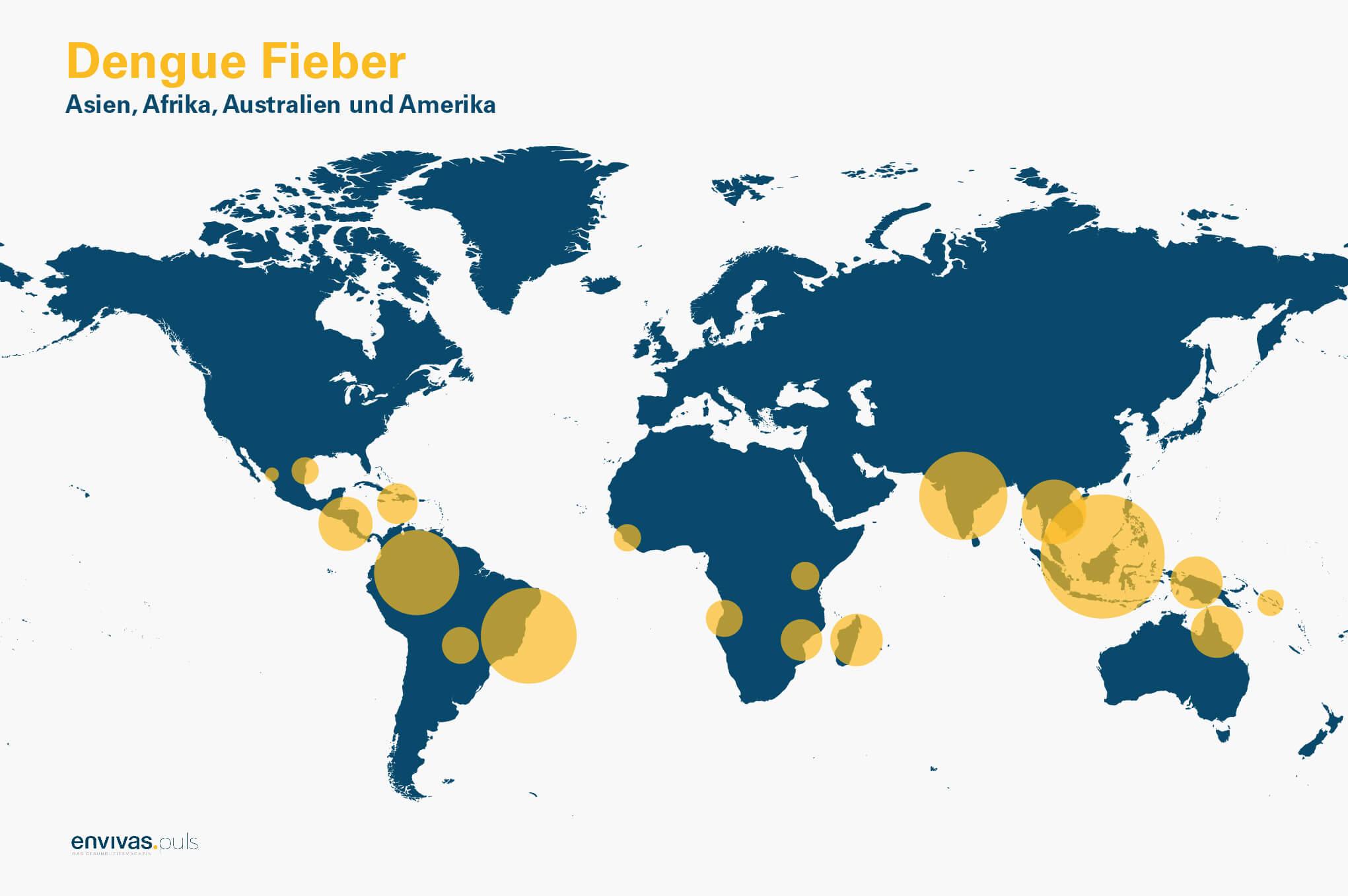 Weltkarte zeigt die Verbreitung des Dengue-Fiebers.