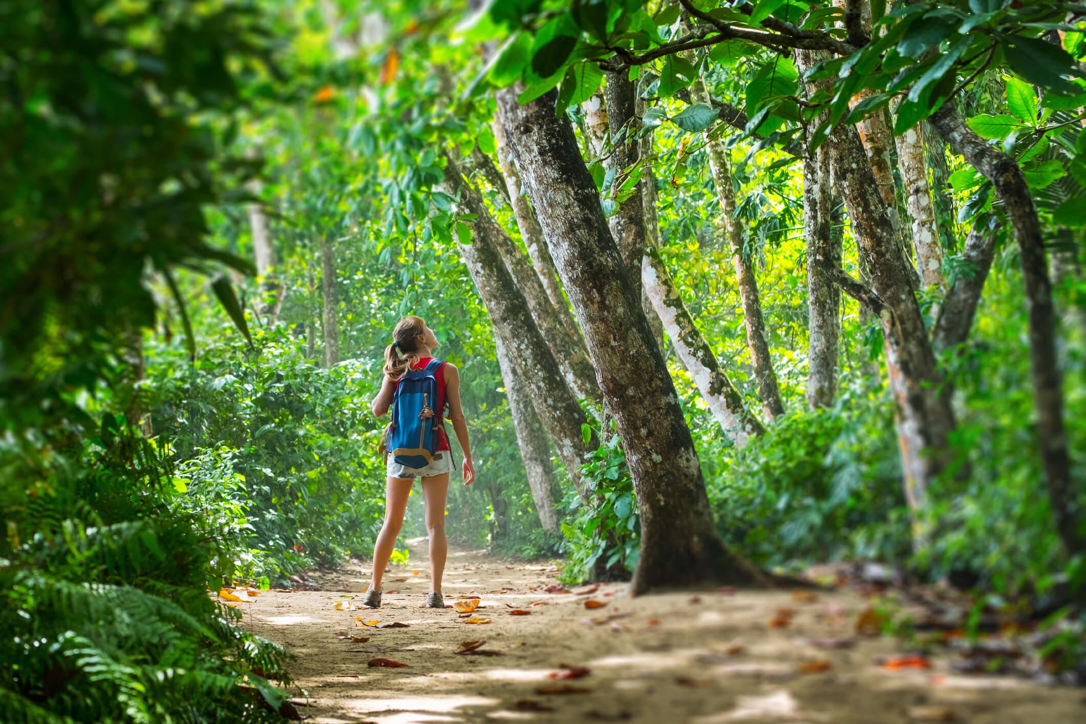 Junge Frau im Urlaub im Urwald von Costa Rica.