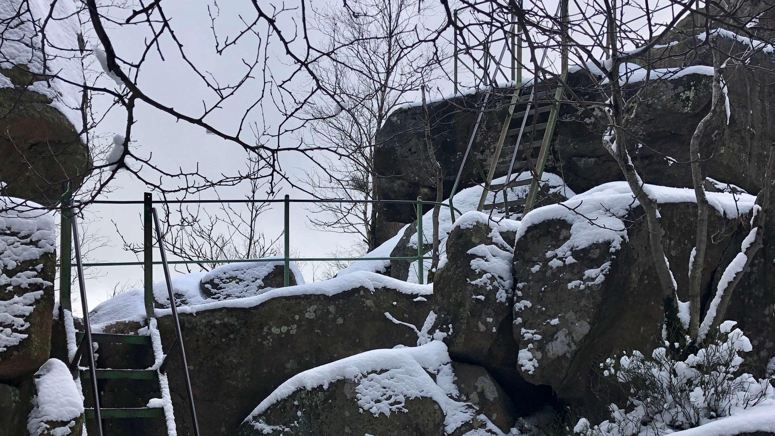 Harz-Eisenleitern