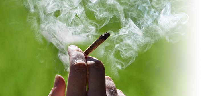 cannabis-joint-rauchen