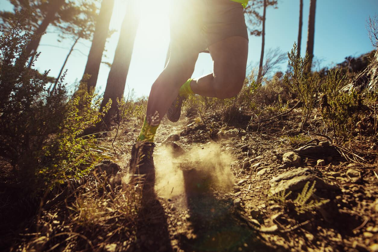 trailrunning-durch-den-wald